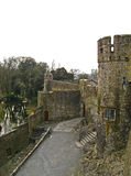 Cahir Castle 07 Royalty Free Stock Image