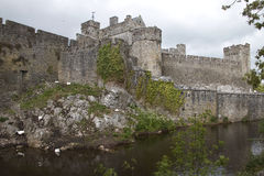 Cahir Castle on an island on River Suir, Cahir, Co Tipperary, Ir Stock Image