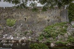 Cahir slott -1391 Arkivbilder