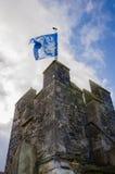 Cahir slotttorn med den europeiska fackliga flaggan Fotografering för Bildbyråer