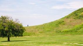 Cahokia kopów Historycznego miejsca drzewo i wzgórze Zdjęcia Stock