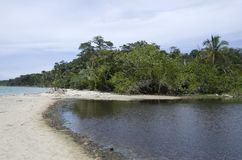Cahuita National Park beach, Costa Rica. Cahuita National Park is a terrestrial and marine national park in the Caribbean La Amistad Conservation Area of Costa Stock Photos