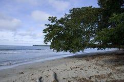Cahuita National Park beach, Costa Rica stock photography
