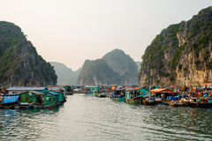 Cai Beo floating village on sunset in Ha Long Bay Stock Image