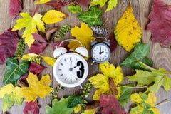 Cai para trás a mudança do tempo Dois pulsos de disparo no fundo das folhas de outono Fotos de Stock