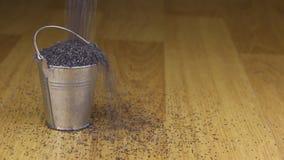 Caia em uma cubeta de sementes de papoila e no assoalho de madeira filme
