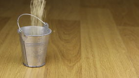 Caia em uma cubeta de sementes de sésamo e no assoalho de madeira filme
