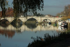 Caia no beira-rio de Tamisa em Richmond - em cima de Tamisa Fotos de Stock