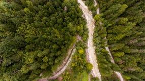 Caiga abajo la vista de la cama de río que corre a través de un bosque Imagen de archivo