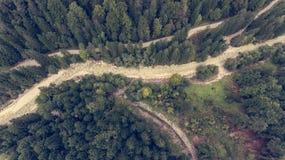 Caiga abajo la vista de la cama de río que corre a través de un bosque Imagenes de archivo