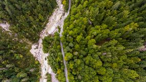 Caiga abajo la vista de la cama de río que corre a través de un bosque Fotos de archivo libres de regalías