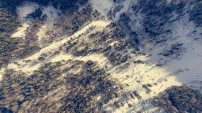 Caiga abajo la vista del camino que pasa a través de bosque del invierno Imagen de archivo