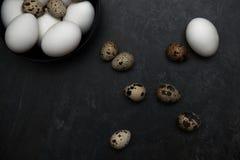 Cailles et oeufs de poulet sur une table Photo stock