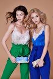 Caillot naturel de style de mode de belle dame sexy de la femme deux élégante photos stock