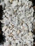 Caillou de marbre blanc de neige photos libres de droits