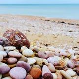 caillou de plage Image libre de droits