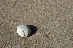 Caillou sur la plage Image libre de droits