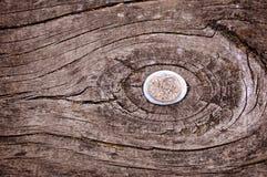 Caillou sur le bois Photos libres de droits