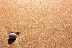 Caillou sur le sable Photographie stock libre de droits