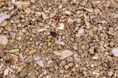 Cailloux arrondis Image libre de droits