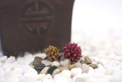 Cailloux colorés par zen Photo stock