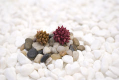 Cailloux colorés par zen Image stock