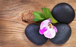 Cailloux de zen. Pierres de station thermale et fleur rose d'orchidée avec les feuilles vertes Photographie stock