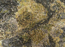 Cailloux en pierre assortis dans différentes couleurs Photographie stock libre de droits