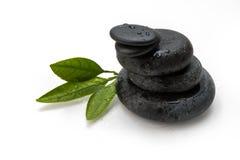 Cailloux et feuille verte Image stock