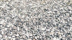 Cailloux gris en gros plan banque de vidéos