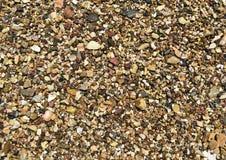 Cailloux humides de plage Images libres de droits