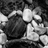 Cailloux noirs et blancs Images stock