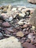 cailloux rouges sur la plage photographie stock