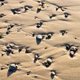 Cailloux sur le sable Image stock