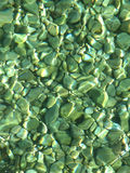 Cailloux verts de tache floue en mer Photos libres de droits