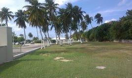 Caimán de Gran, Islas Caimán Imagen de archivo