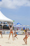 CAIMÁN MAGNÍFICO, CAYMAN ISLANDS - 27 DE MARZO: Vo de la hembra Foto de archivo libre de regalías