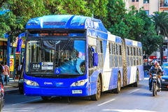 Caio Mondego. SANTIAGO, CHILE - NOVEMBER 12, 2015: Articulated city bus Caio Mondego in the city street Stock Photo