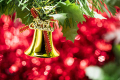 Cair do ornamento do sino de Natal no ramo de árvore com backg vermelho do bokeh Imagem de Stock Royalty Free