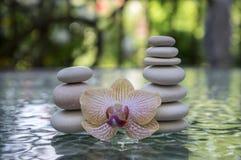 Cairn en pierre sur le fond trouble vert, les cailloux légers et les pierres, fleur de floraison d'orchidée photo libre de droits