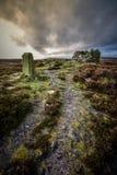 Cairn Yorkshire Heather Moorland de pierre de frontière Photo stock