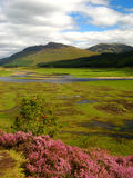 Cairngorm National Park 06 Stock Image