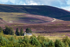 CAIRNGORMS, BADENOCH und STRATHSPEY/SCOTLAND - 26. August: Haus Stockfotos
