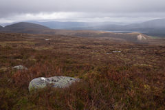 Cairngorms National Park, wasteland Stock Photography