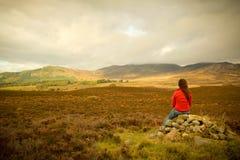 Cairngorms in Scotland Stock Photos