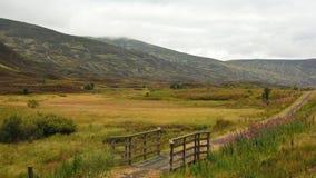 Cairngorms Skottland Arkivbild