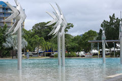 Cairns Esplanade. Beautiful clean pool on the Cairns Queensland esplanade Royalty Free Stock Photography