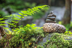 Cairns in the forest Stock Images