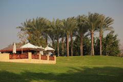 In Cairo city park. The landscape in Cairo city park Stock Photo