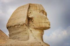 cairo egypt giza sphinx Arkivfoto